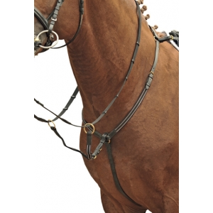 Breastplate/Martingale Brass Fittings